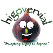 Higovervial